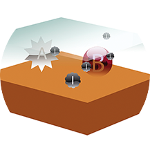 یون ها به سمت باکتری ها جذب می شوند